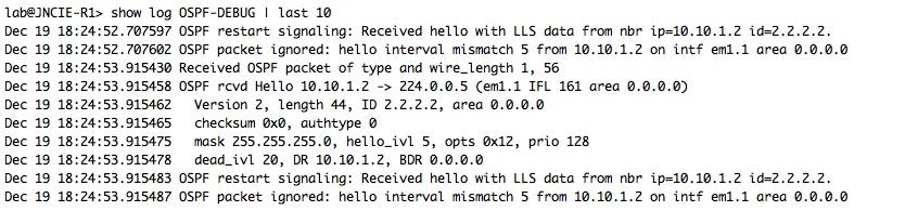 OSPF-DEBUG-Timer-Mismatch